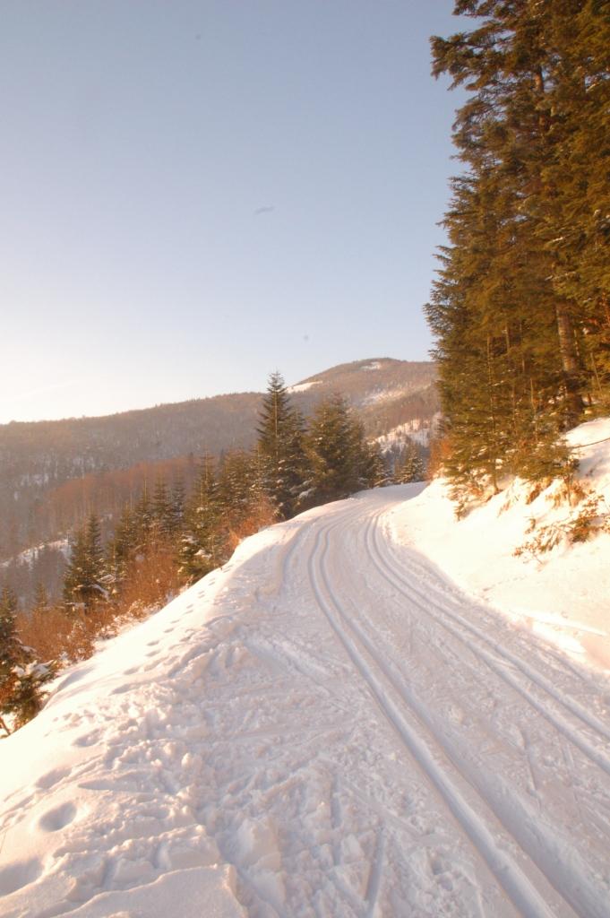 """Trasa do uprawiania narciarstwa zimowego """"Mogielica"""""""