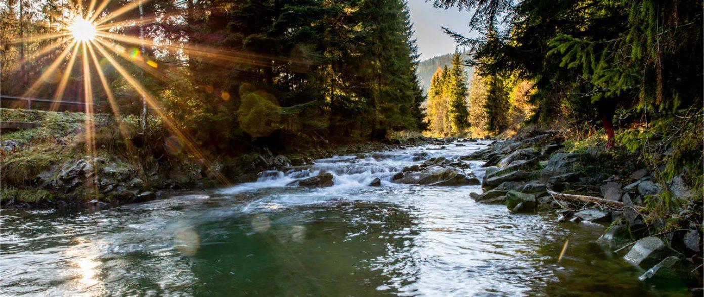 Dolina Rzeki Kamienica