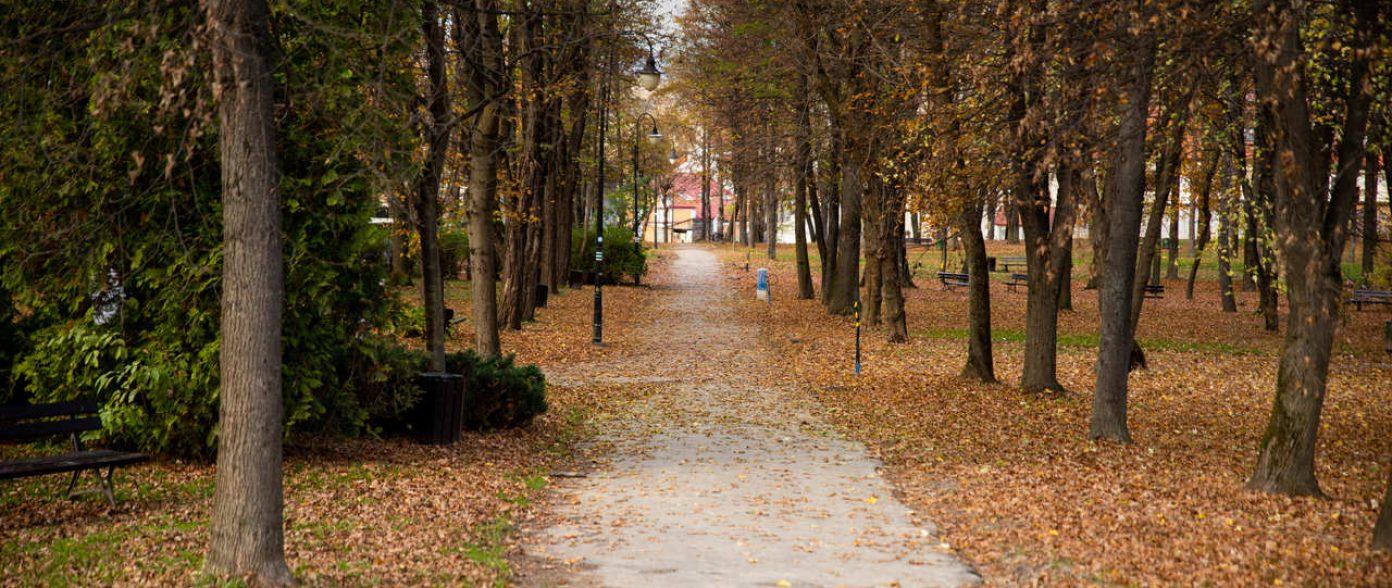 Park Miejski Limanowa